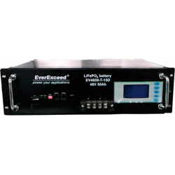 Литий-железо-фосфатный аккумулятор (LiFePO4) EverExceed EV4850-T-15D (48В50Aч)