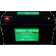 Аккумуляторная батарея EverExceed ST-12200