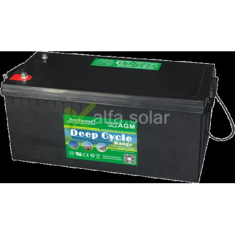 Аккумуляторная батарея EverExceed DP-12200
