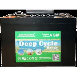 Акумуляторна батарея EverExceed DP-12100