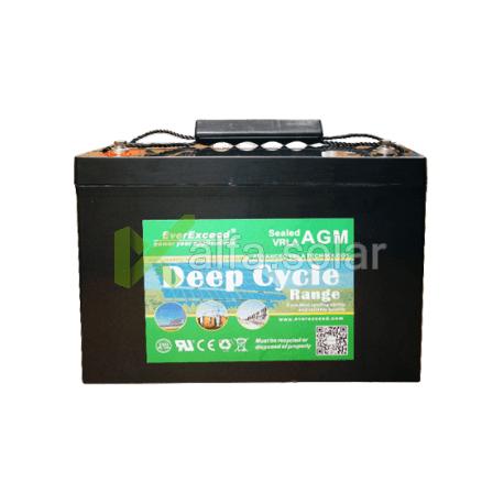 Аккумуляторная батарея EverExceed DP-12100